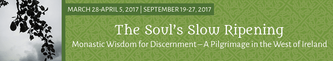 The Soul's Slow Ripening: <br>Monastic Wisdom for Discernment – A Pilgrimage in the West of Ireland (2017)