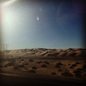 Lacy desert