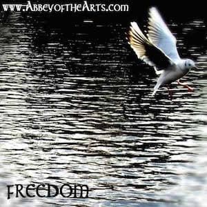 April 14- Freedom