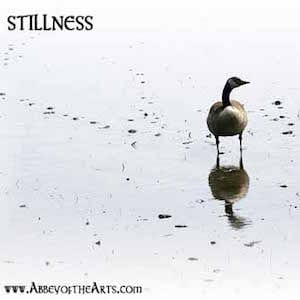 April 22- Stillness