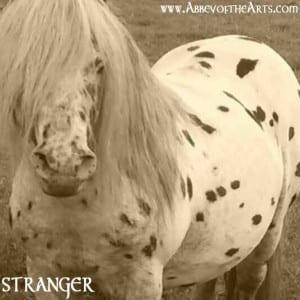 May 18 - Stranger