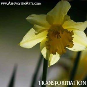 May 23 - Transformation