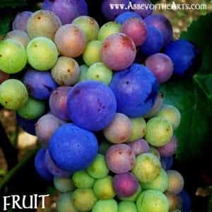 May 3 - Fruit