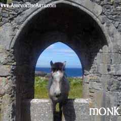 May 8 - Monk